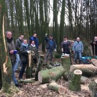 Maifeuer Holzwerbung 2019