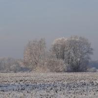 Winterimpressionen 2016